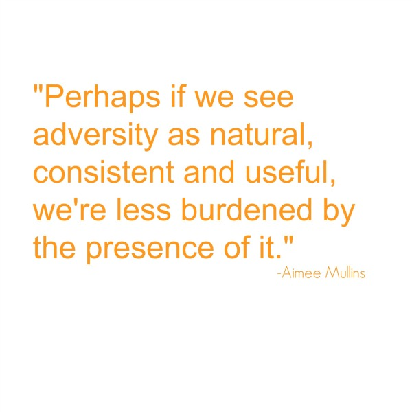 Adversity2