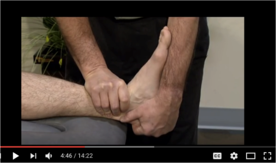 Assessment and Treatment of The Talocrural Joint