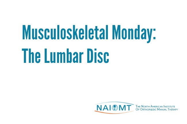 Musculoskeletal Monday: The Lumbar Disc